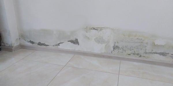 Trápi vás nadmerná vlhkosť a plesnivé steny v garáži? Hörmann ponúka riešenia